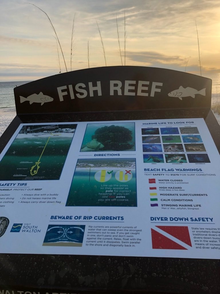 Fish reef at Inlet Beach