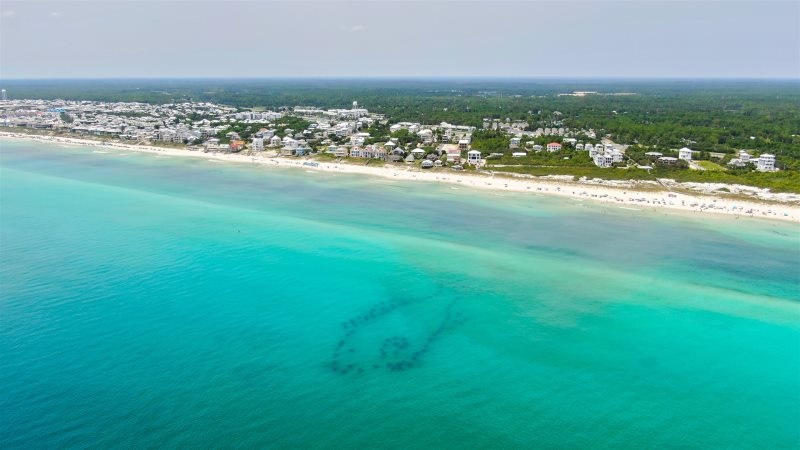 Artificial snorkel reef Inlet Beach 30A Florida